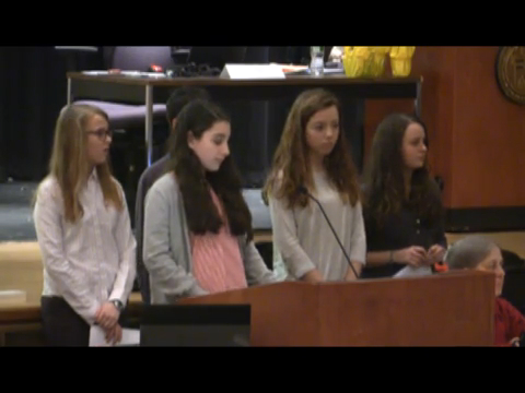 2015 March 28 Town Meeting - AM (Financial)
